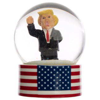 Collectable The President Snow Globe Waterball