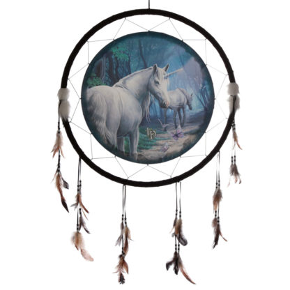 Decorative Lisa Parker The Journey Home 60cm Dreamcatcher
