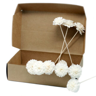 Natural Diffuser Flowers - Carnation on Reed